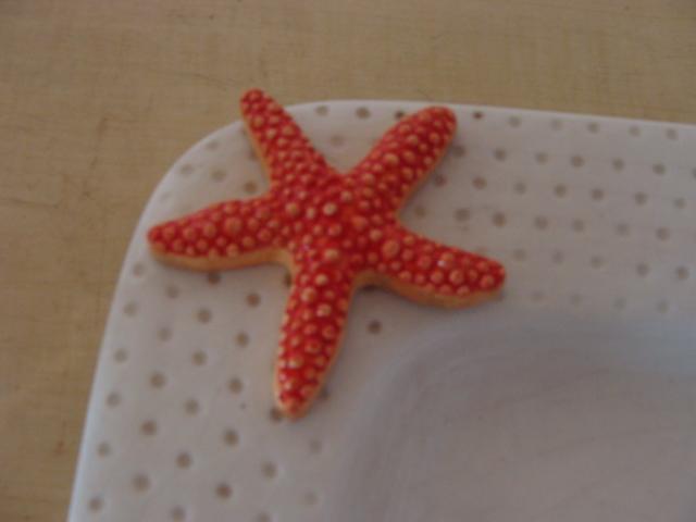 Starfish_02_101609
